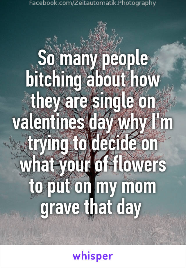 So many people bitching about how they are single on valentines day why I'm trying to decide on what your of flowers to put on my mom grave that day