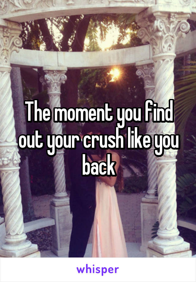 The moment you find out your crush like you back