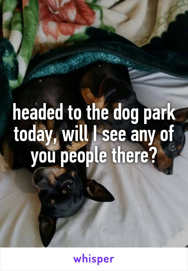 headed to the dog park today, will I see any of you people there?