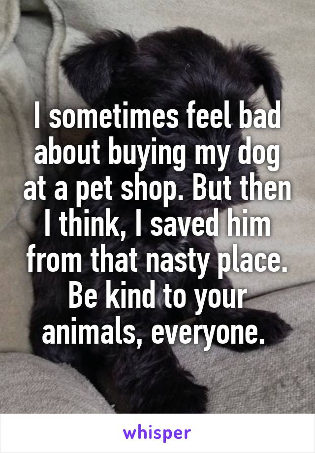 I sometimes feel bad about buying my dog at a pet shop. But then I think, I saved him from that nasty place. Be kind to your animals, everyone.