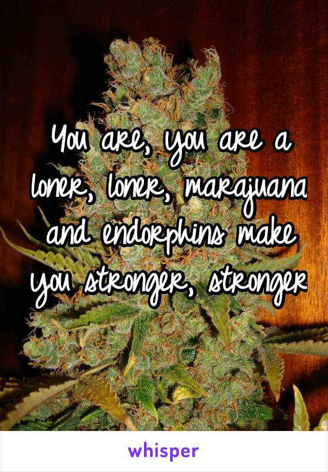 You are, you are a loner, loner, marajuana and endorphins make you stronger, stronger