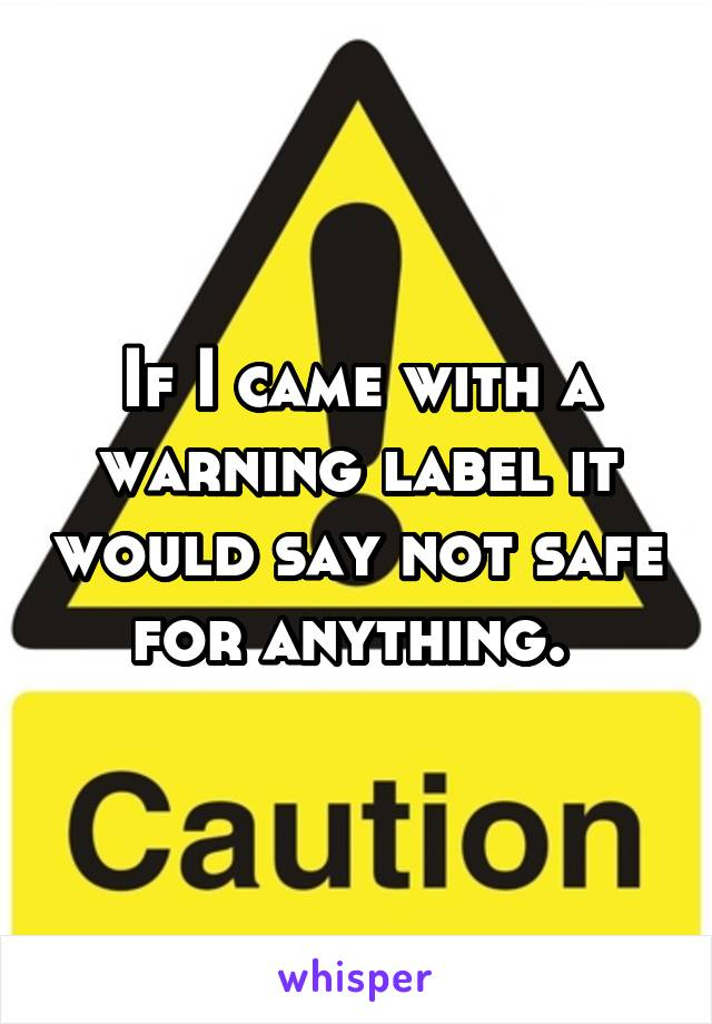If I came with a warning label it would say not safe for anything.