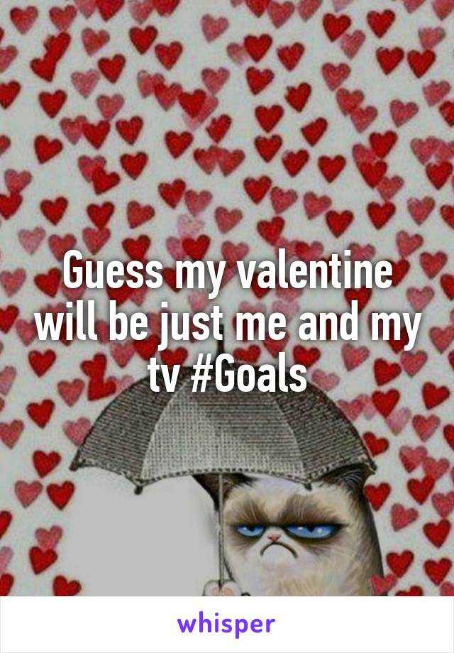 Guess my valentine will be just me and my tv #Goals