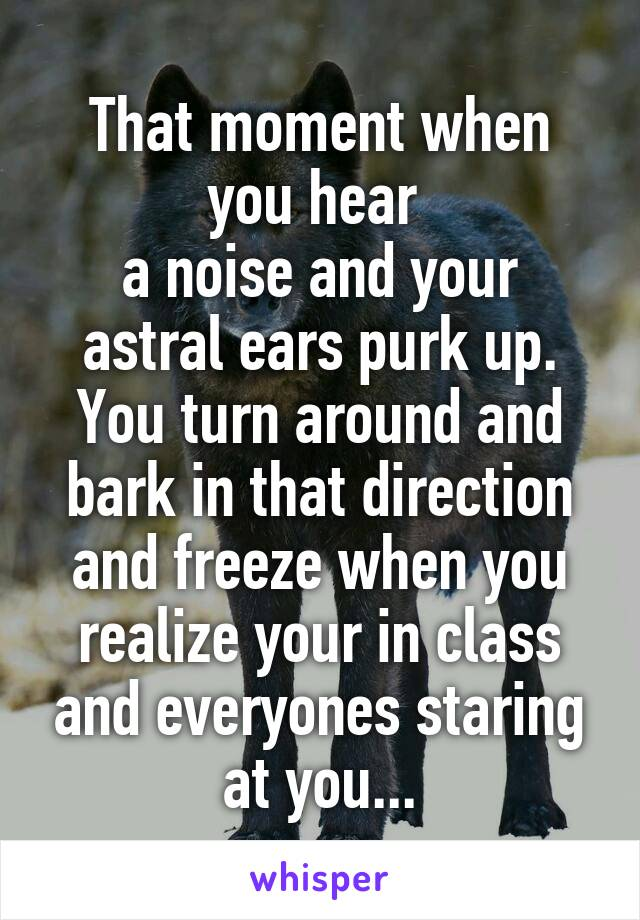 That moment when you hear  a noise and your astral ears purk up. You turn around and bark in that direction and freeze when you realize your in class and everyones staring at you...