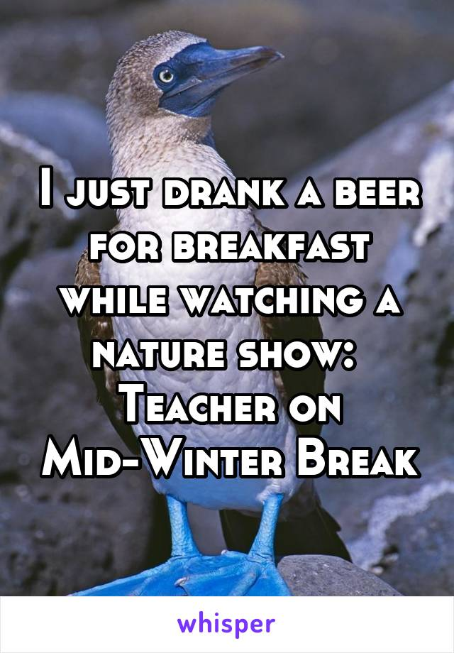 I just drank a beer for breakfast while watching a nature show:  Teacher on Mid-Winter Break