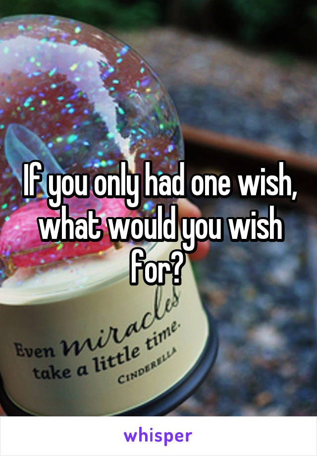 If you only had one wish, what would you wish for?