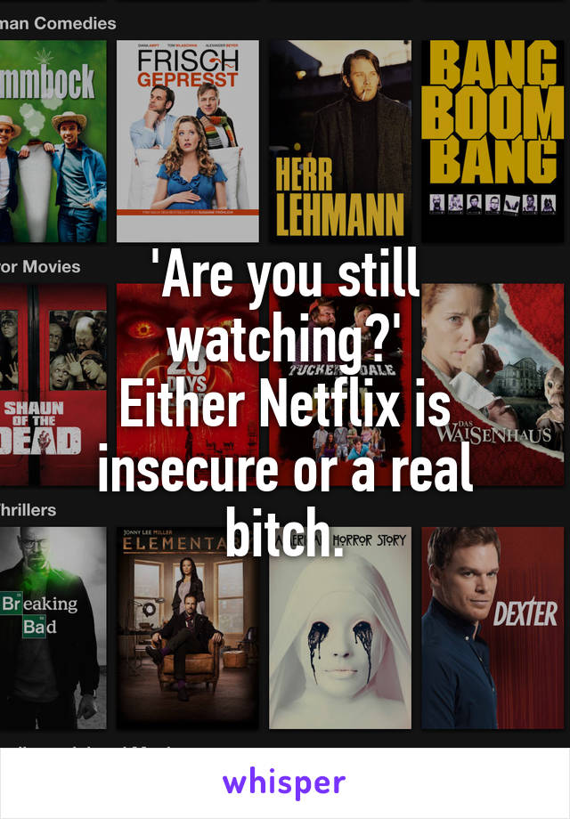 'Are you still watching?' Either Netflix is insecure or a real bitch.
