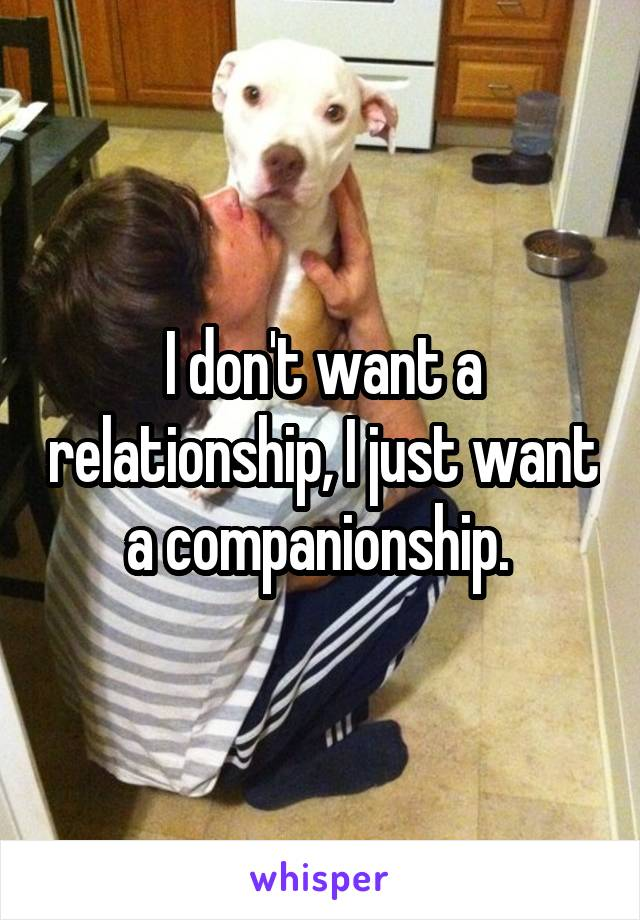 I don't want a relationship, I just want a companionship.