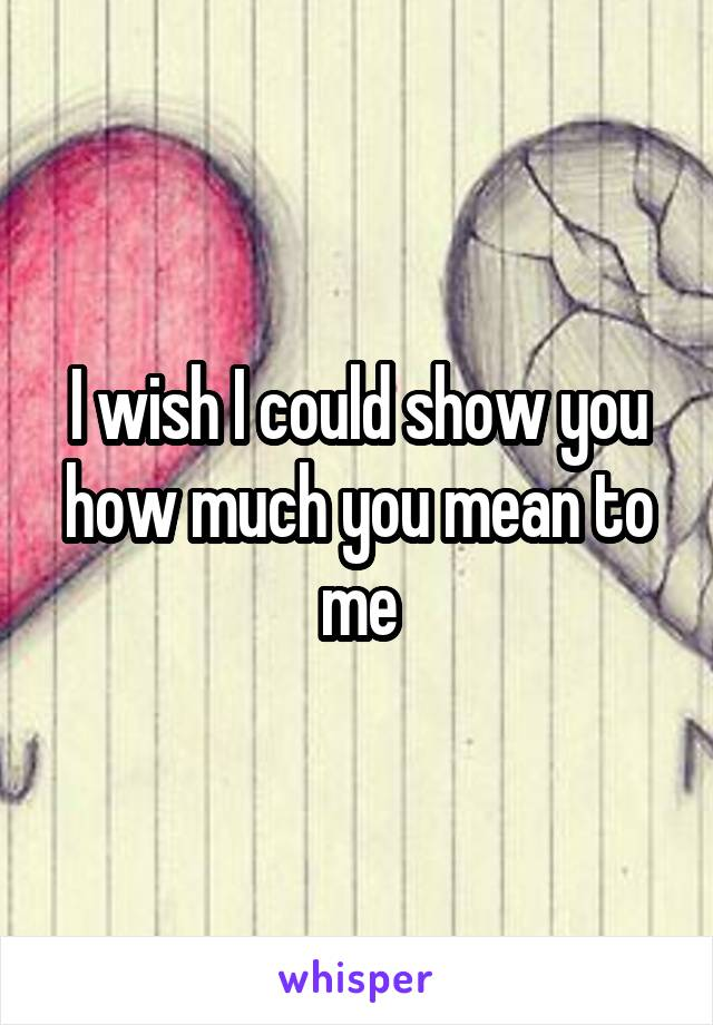 I wish I could show you how much you mean to me