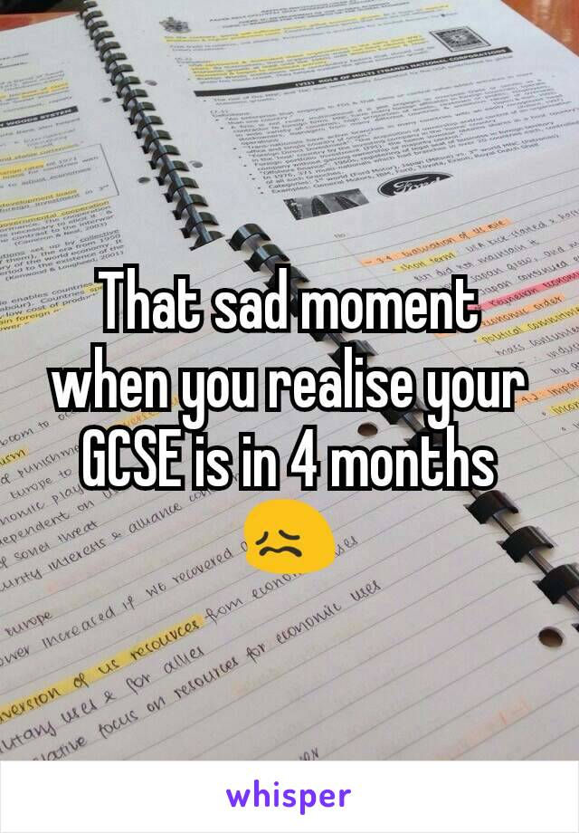 That sad moment when you realise your GCSE is in 4 months 😖
