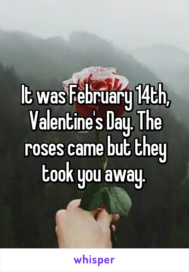 It was February 14th, Valentine's Day. The roses came but they took you away.