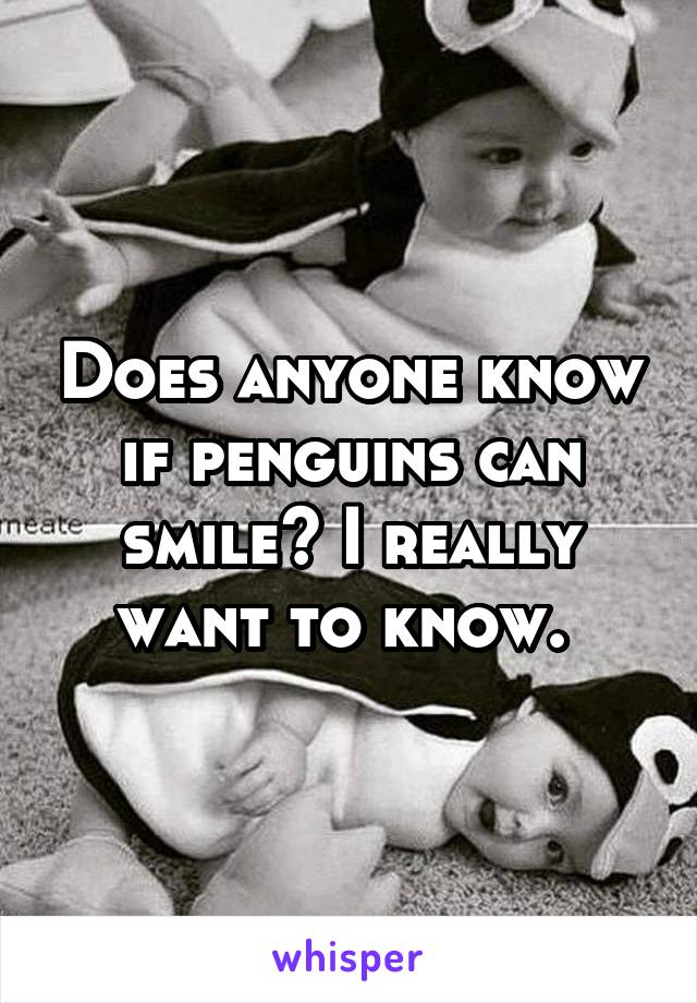 Does anyone know if penguins can smile? I really want to know.