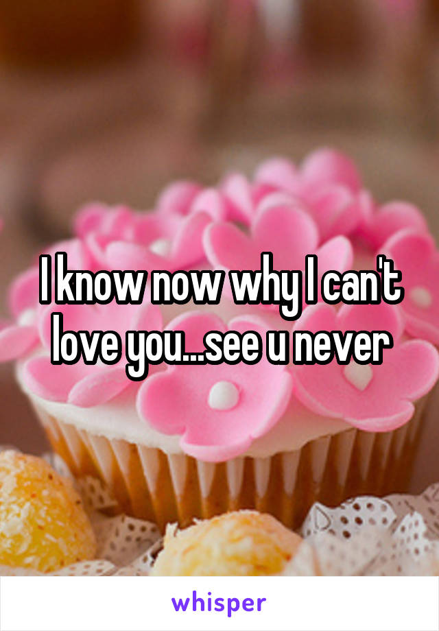 I know now why I can't love you...see u never