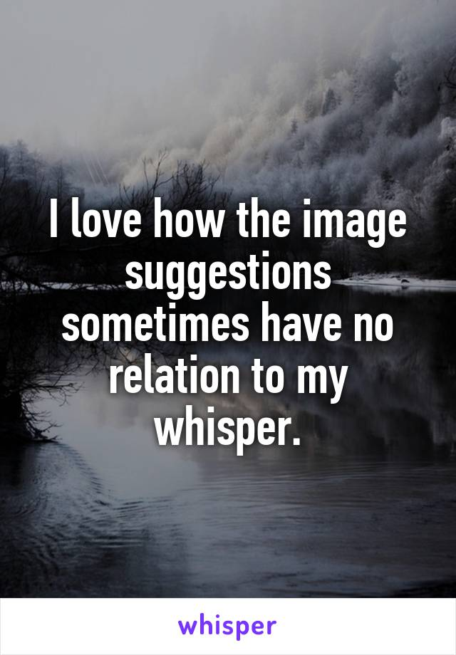 I love how the image suggestions sometimes have no relation to my whisper.
