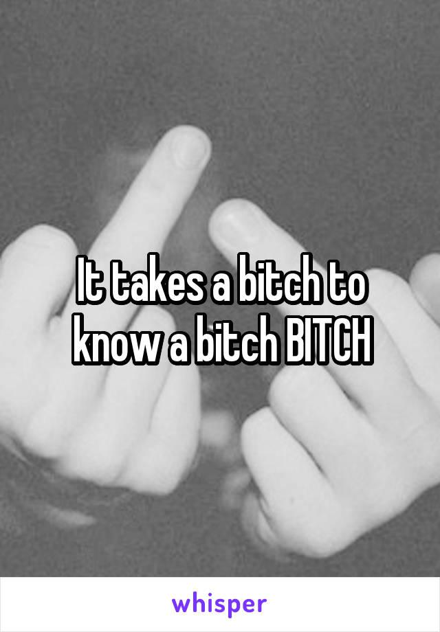 It takes a bitch to know a bitch BITCH