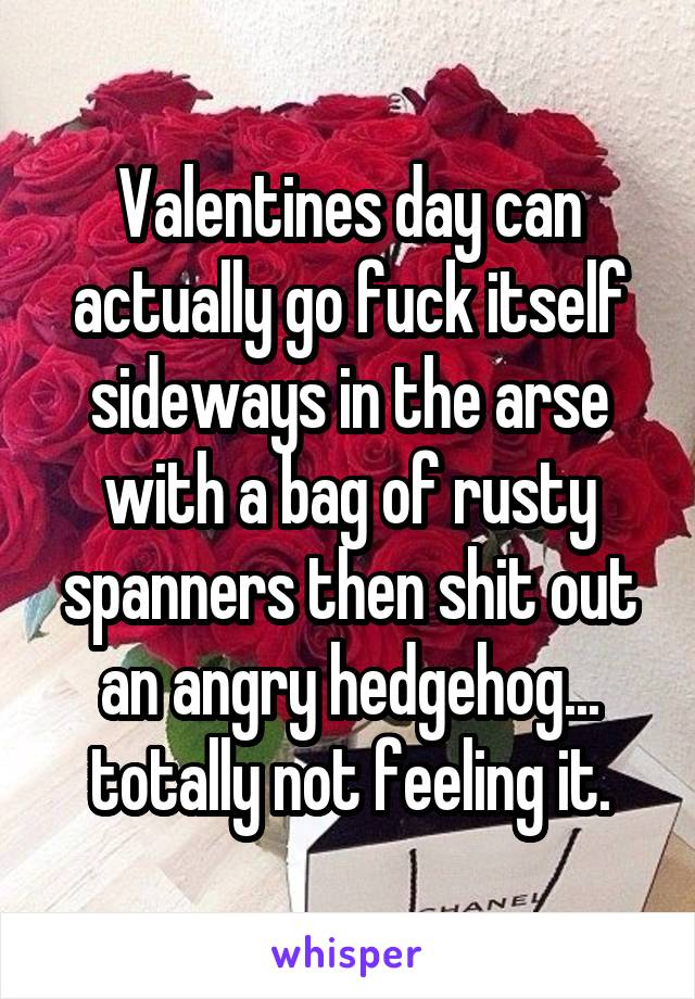 Valentines day can actually go fuck itself sideways in the arse with a bag of rusty spanners then shit out an angry hedgehog... totally not feeling it.