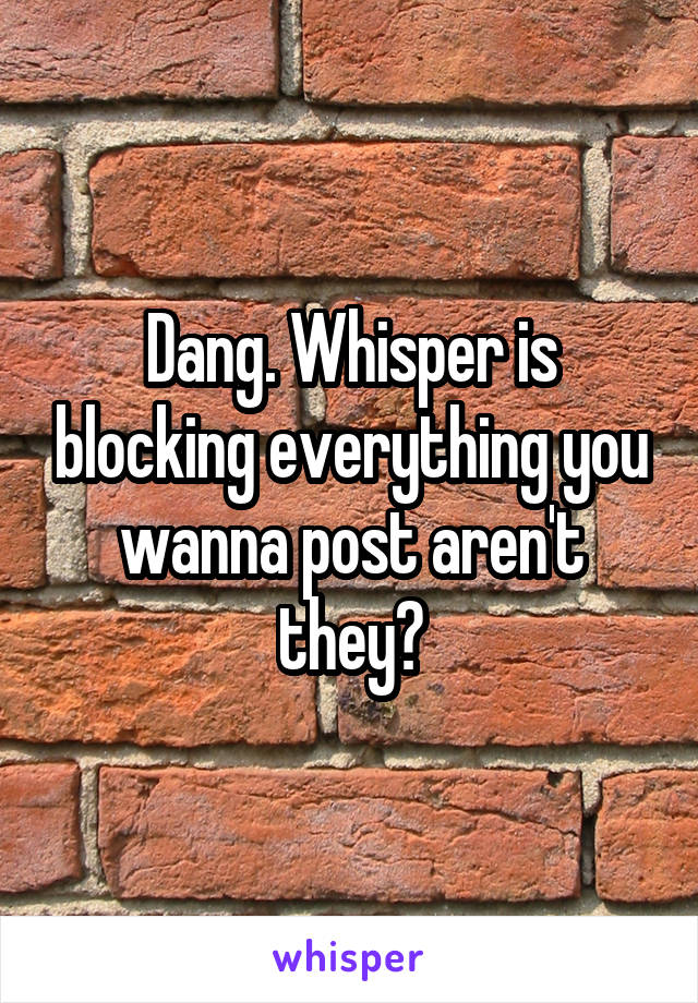 Dang. Whisper is blocking everything you wanna post aren't they?