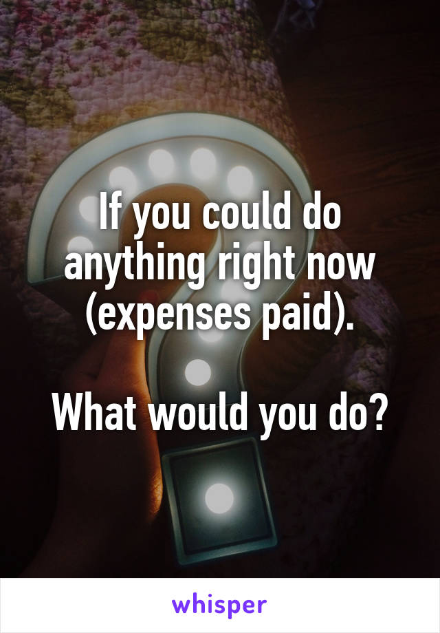 If you could do anything right now (expenses paid).  What would you do?