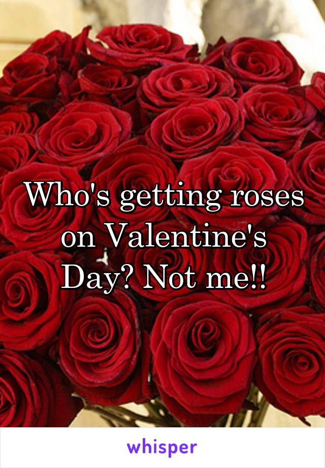 Who's getting roses on Valentine's Day? Not me!!