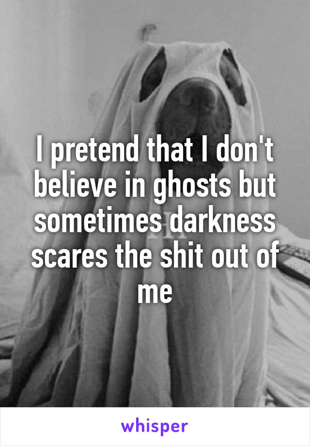 I pretend that I don't believe in ghosts but sometimes darkness scares the shit out of me