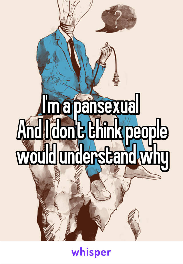 I'm a pansexual  And I don't think people would understand why