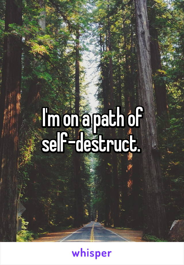 I'm on a path of self-destruct.