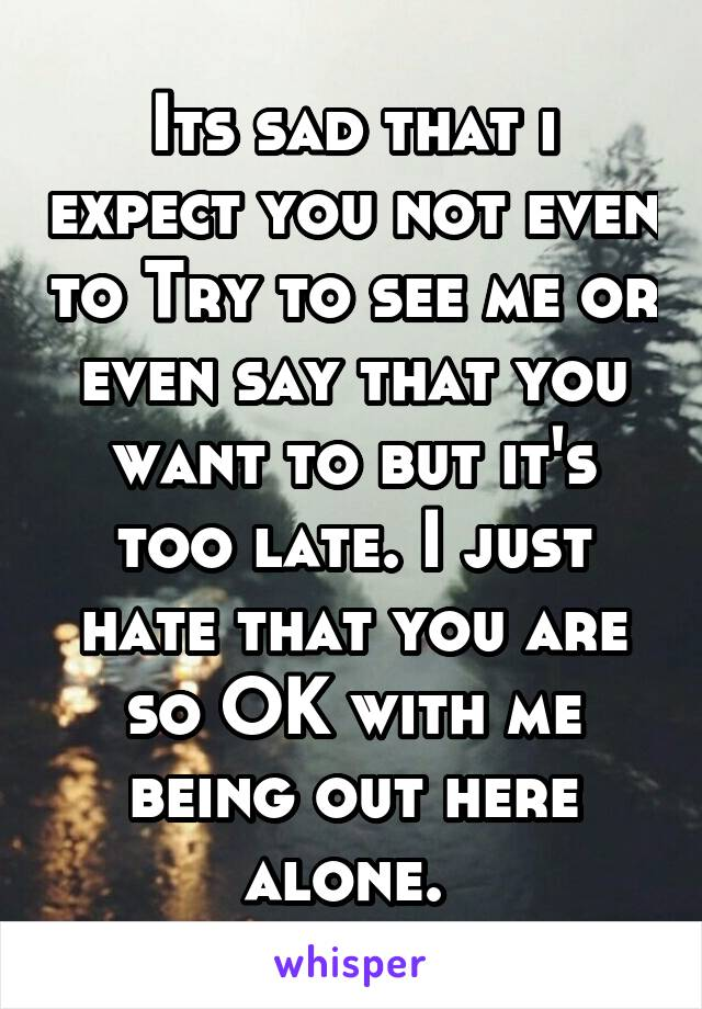 Its sad that i expect you not even to Try to see me or even say that you want to but it's too late. I just hate that you are so OK with me being out here alone.