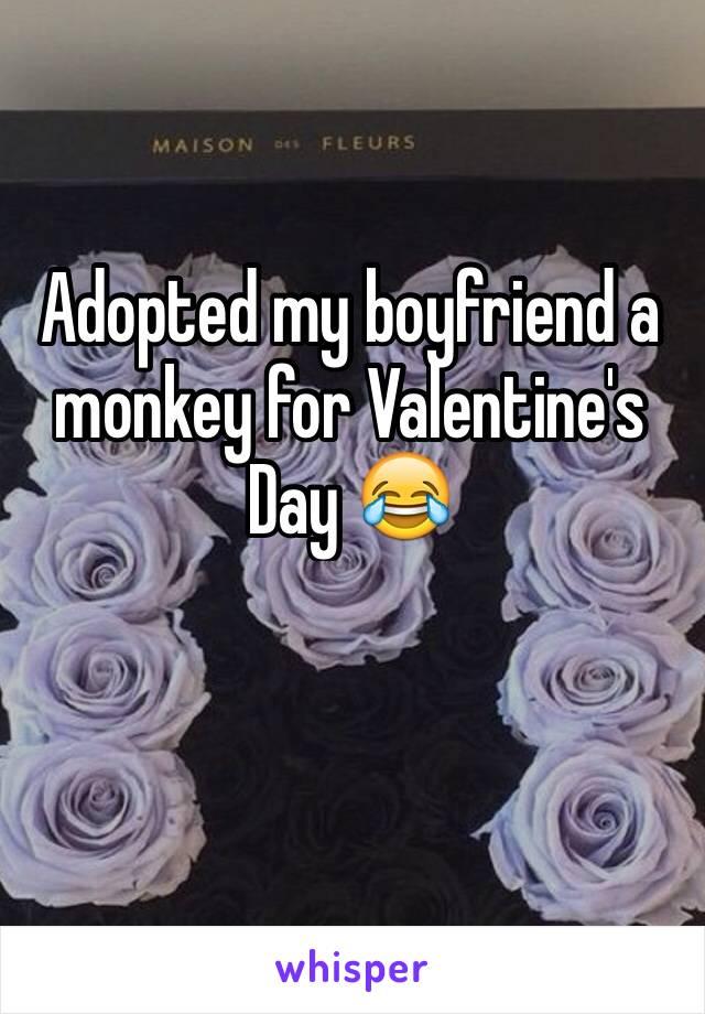 Adopted my boyfriend a monkey for Valentine's Day 😂