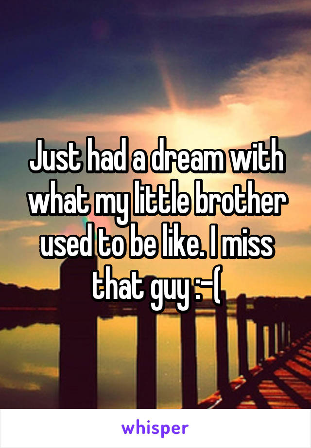 Just had a dream with what my little brother used to be like. I miss that guy :-(