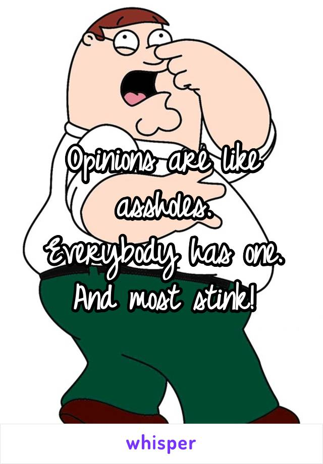 Opinions are like assholes. Everybody has one. And most stink!
