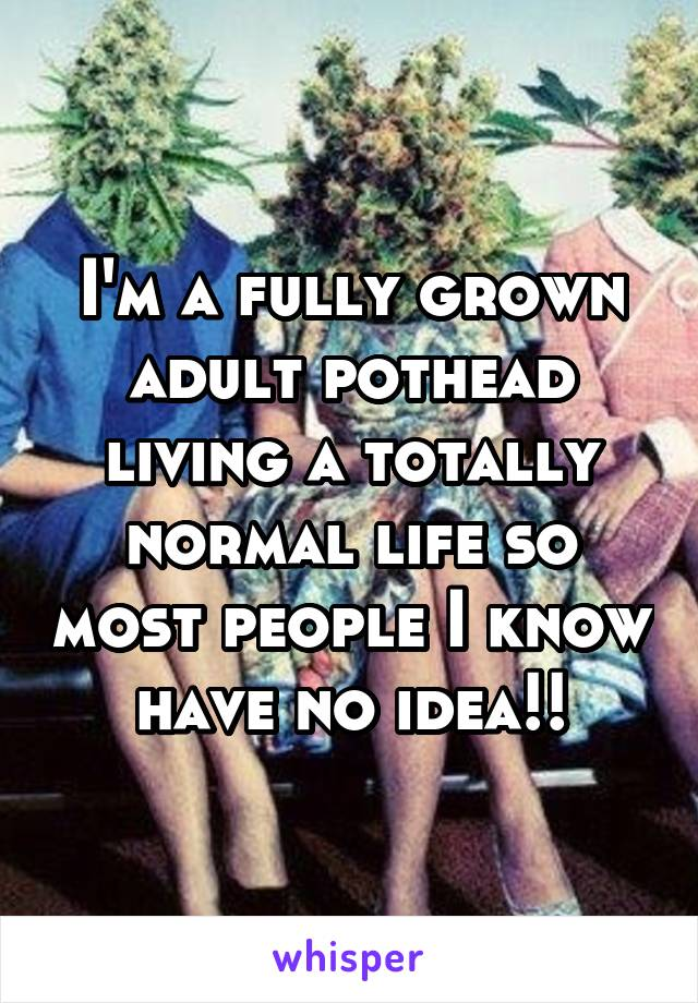 I'm a fully grown adult pothead living a totally normal life so most people I know have no idea!!