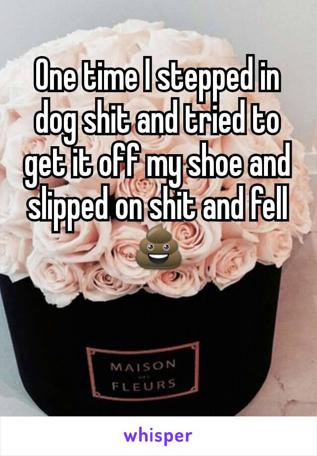 One time I stepped in dog shit and tried to get it off my shoe and slipped on shit and fell 💩