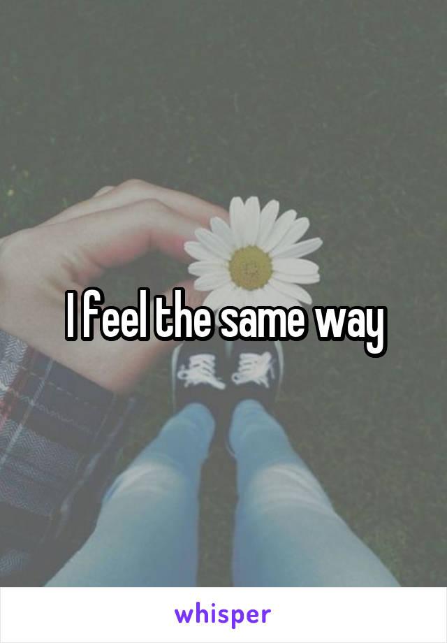 I feel the same way