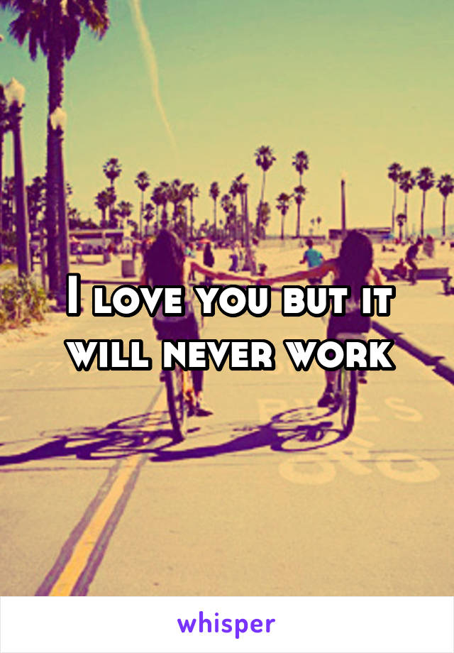 I love you but it will never work