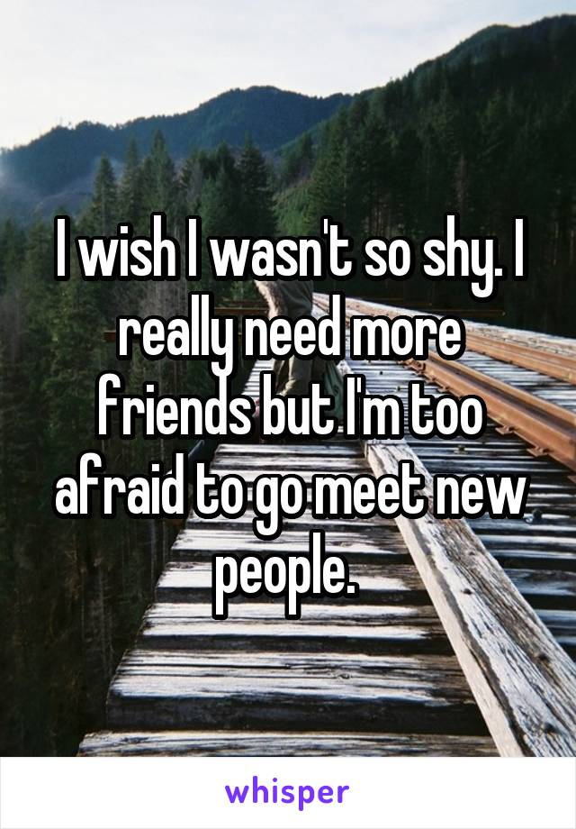 I wish I wasn't so shy. I really need more friends but I'm too afraid to go meet new people.