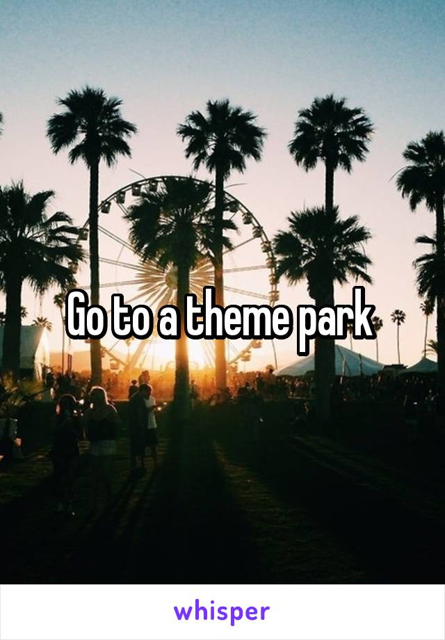 Go to a theme park