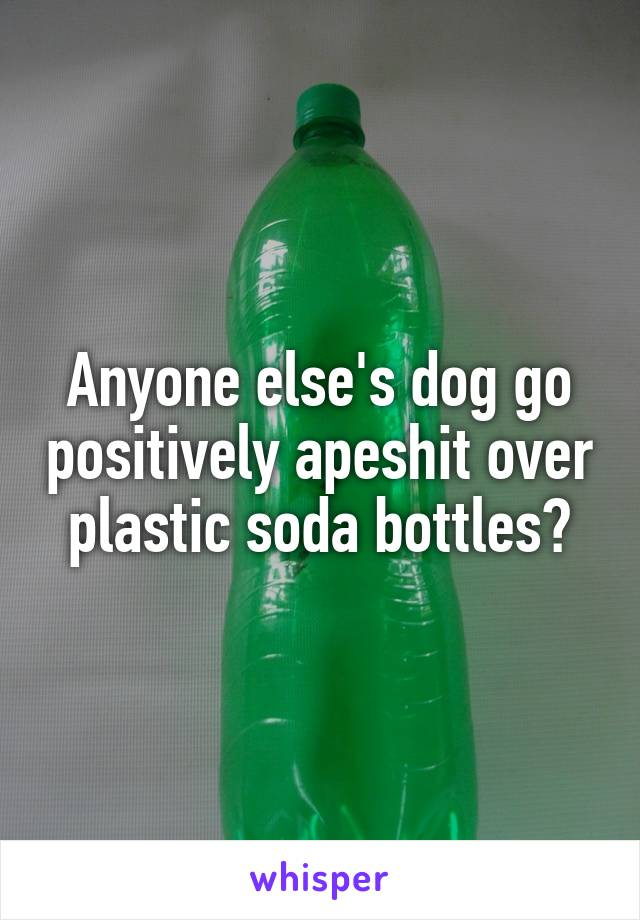 Anyone else's dog go positively apeshit over plastic soda bottles?