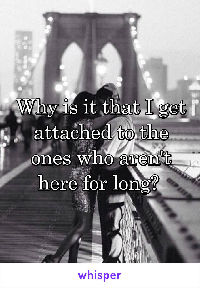 Why is it that I get attached to the ones who aren't here for long?