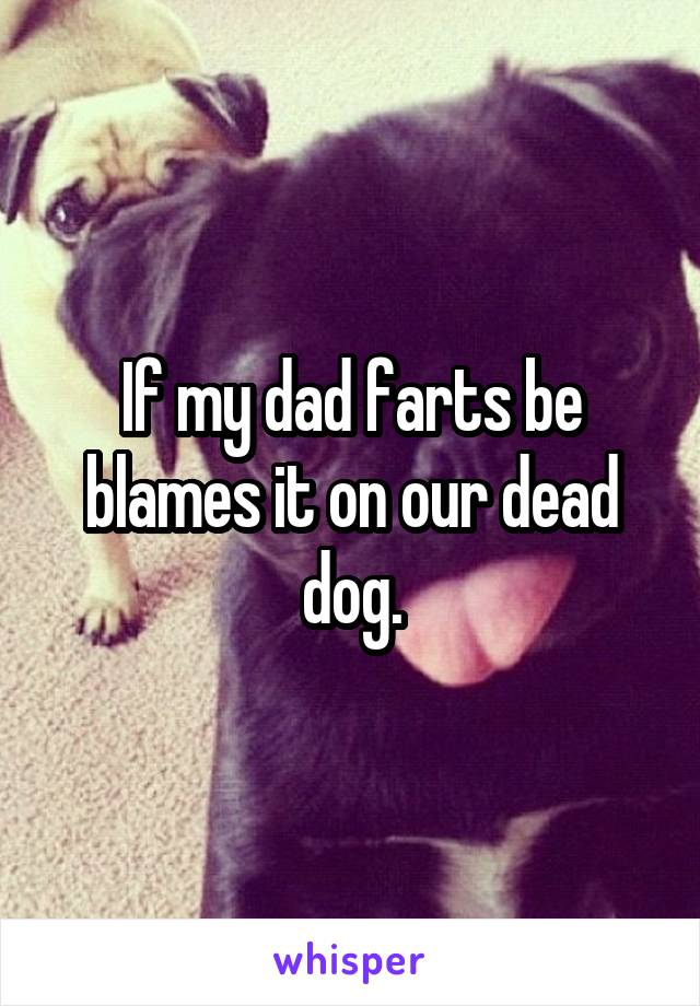 If my dad farts be blames it on our dead dog.