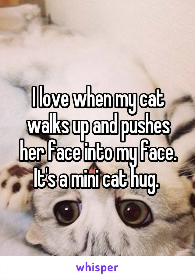 I love when my cat walks up and pushes her face into my face. It's a mini cat hug.