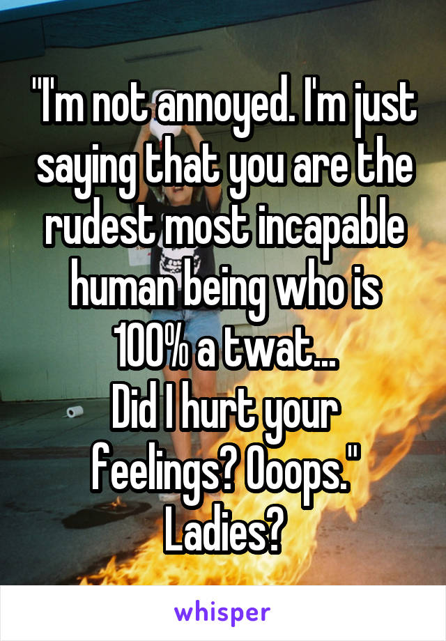 """I'm not annoyed. I'm just saying that you are the rudest most incapable human being who is 100% a twat... Did I hurt your feelings? Ooops."" Ladies?"