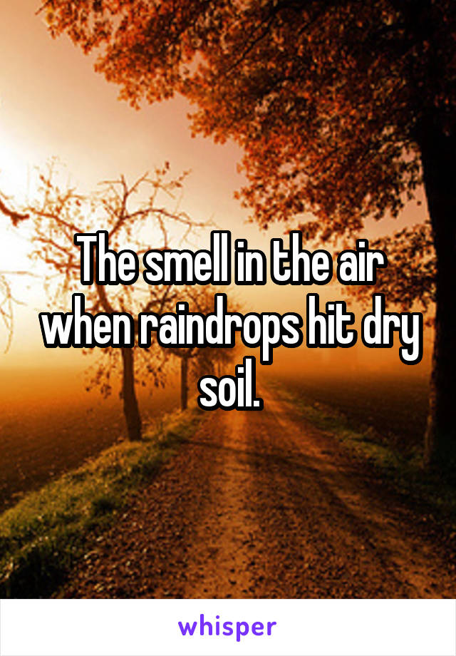 The smell in the air when raindrops hit dry soil.
