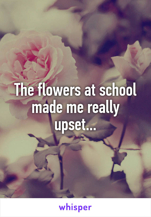 The flowers at school made me really upset...