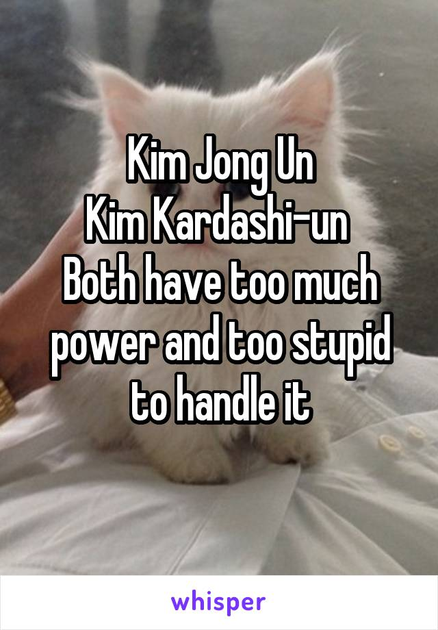 Kim Jong Un Kim Kardashi-un  Both have too much power and too stupid to handle it