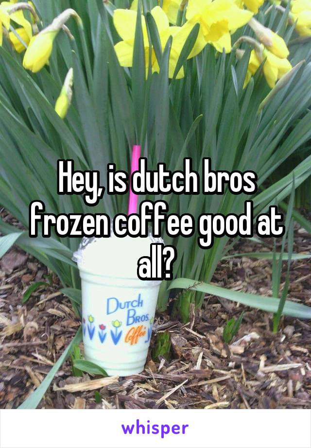 Hey, is dutch bros frozen coffee good at all?
