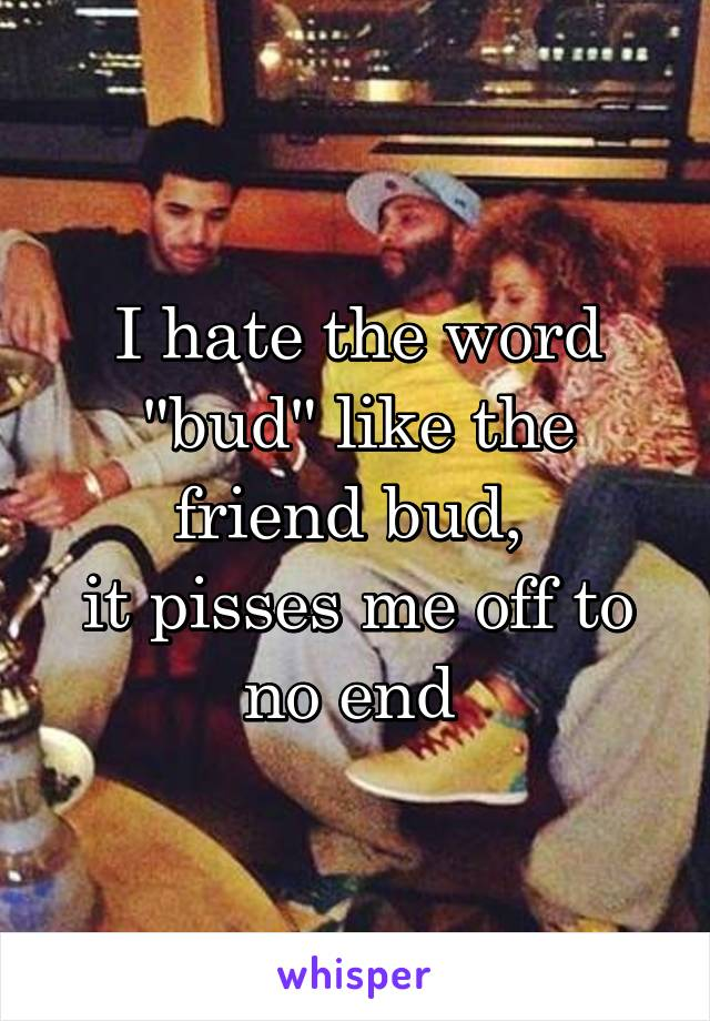 "I hate the word ""bud"" like the friend bud,  it pisses me off to no end"