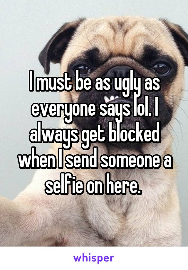 I must be as ugly as everyone says lol. I always get blocked when I send someone a selfie on here.