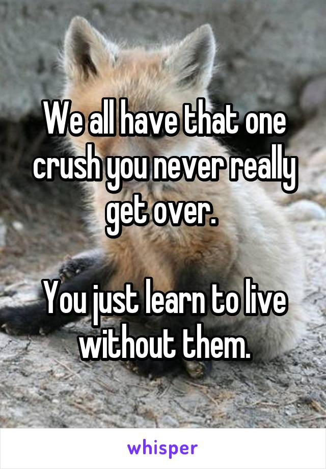 We all have that one crush you never really get over.   You just learn to live without them.