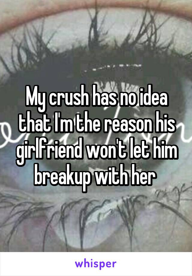 My crush has no idea that I'm the reason his girlfriend won't let him breakup with her