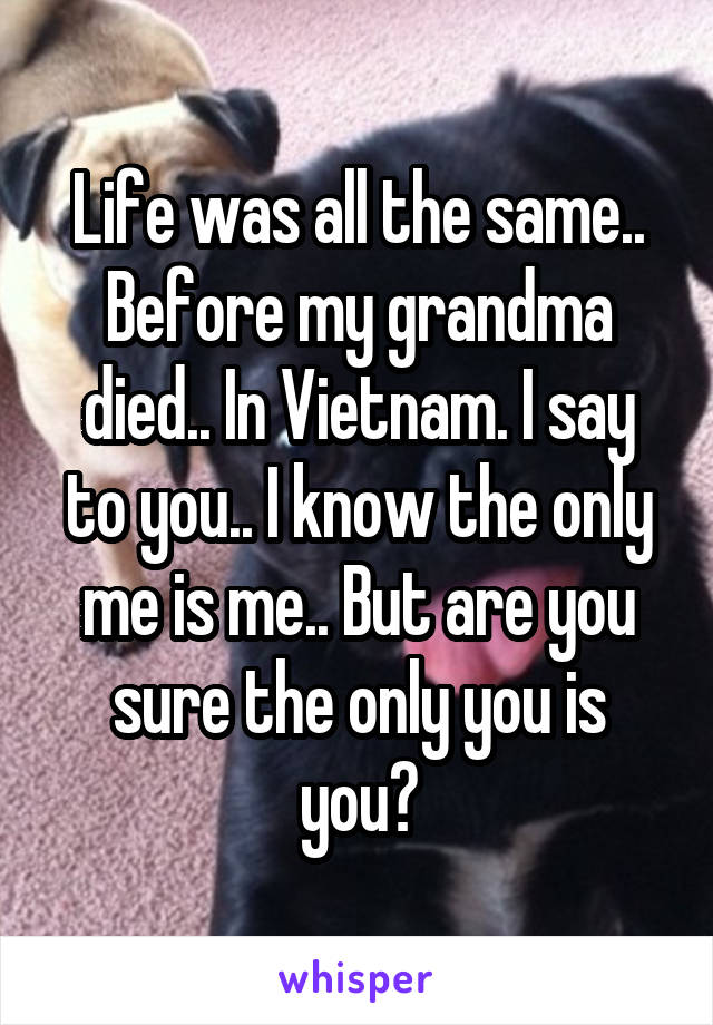 Life was all the same.. Before my grandma died.. In Vietnam. I say to you.. I know the only me is me.. But are you sure the only you is you?
